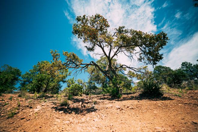atalaya trail-1